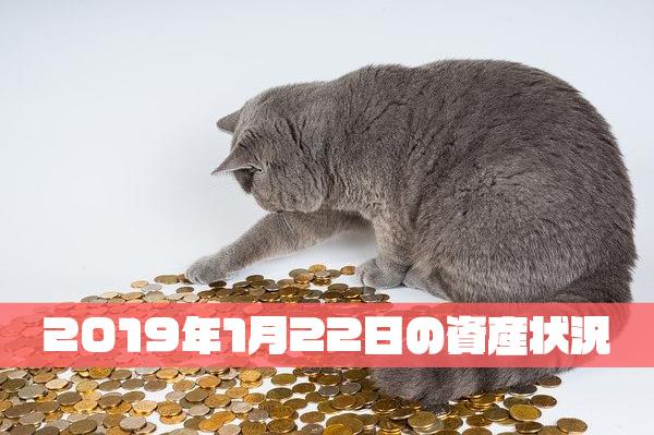 2019年1月22日の資産状況【23,878,587円】